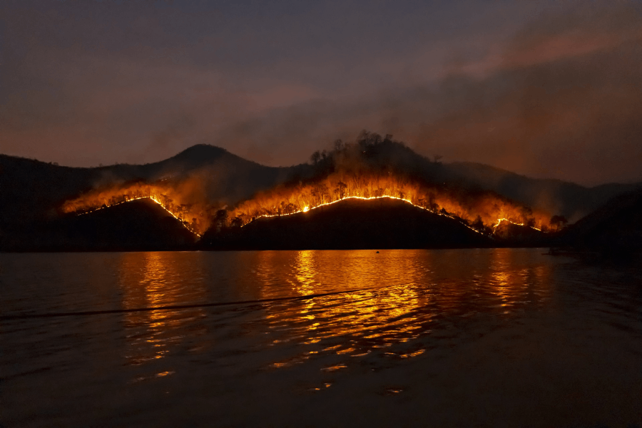 Arch Capital offers reinsurance capacity to Delos California wildfire cover