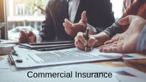 Hippo improves into commercial insurance